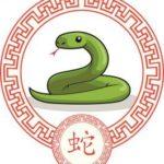 Horóscopo Chino  2021 - Serpiente
